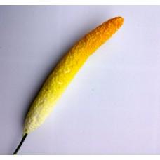 Centers for flowers 6 cm - Anthurium
