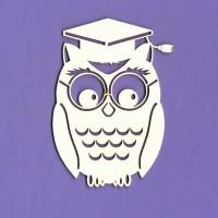 Mr Owl - 0156 Cardboard
