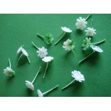 Centers for flowers - White/Green