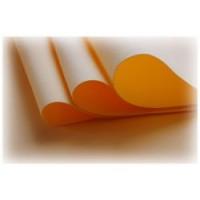 0 Silk Foam Apricot  - 0004 Silk Foam