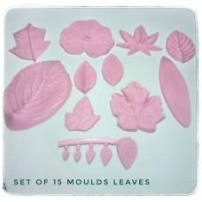 01 Set of moulds -  Leaves