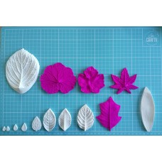 01 Set of moulds -  Leaves