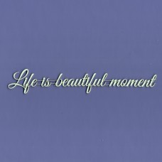 Life is a beautiful moment - T0931 Cardboard
