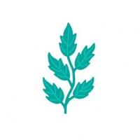 Rosy Owl Dies - Leaves 5