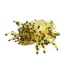 Matt stamens - Two-coloured - Yellow/Black